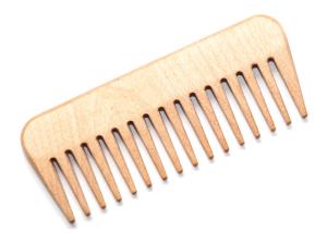 comb-brush-inecto