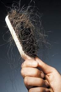 Damaged-Hair-in-Hairbrush